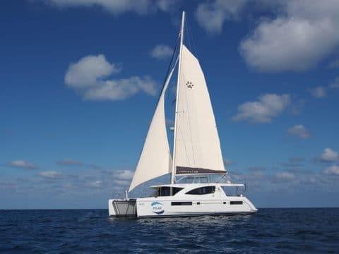 Pilar Sailing Catamaran